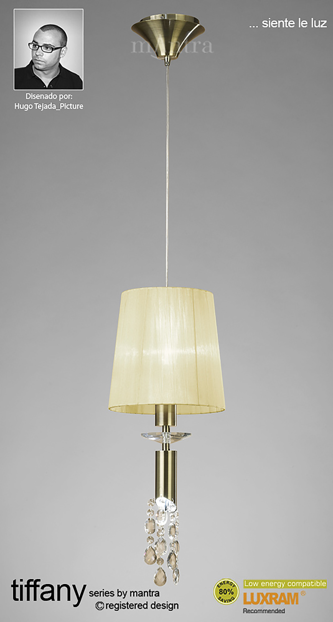 Tiffany AB Crystal Floor Lamps Mantra Contemporary Crystal Floor Lamps