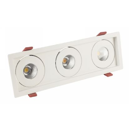 BIZZ 12-3 Recessed Ceiling Luminaires Dlux Multi-Head Recess Ceiling